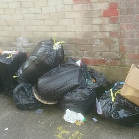 Fines issued for fly-tipping and dog fouling