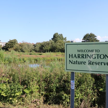 Open Day at Harrington Nature Reserve
